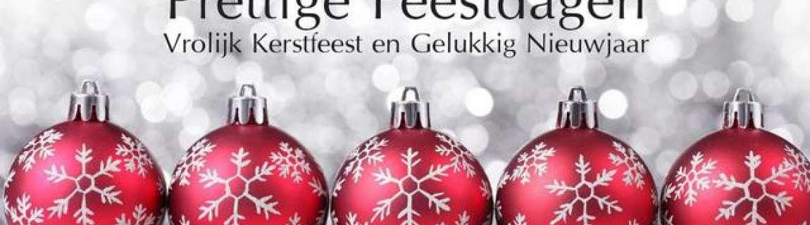 Afdeling Bever Zalige Kerst En Gelukkig Nieuwjaar Van Het Ganse